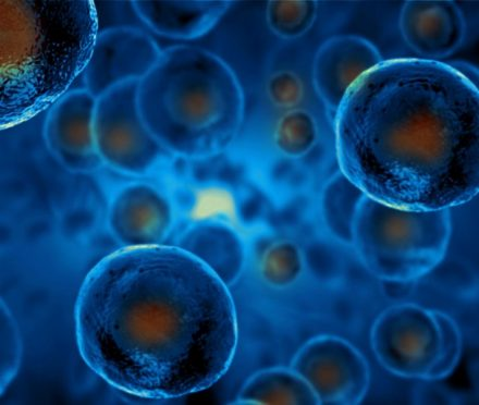 regenerative medicine chardon oh
