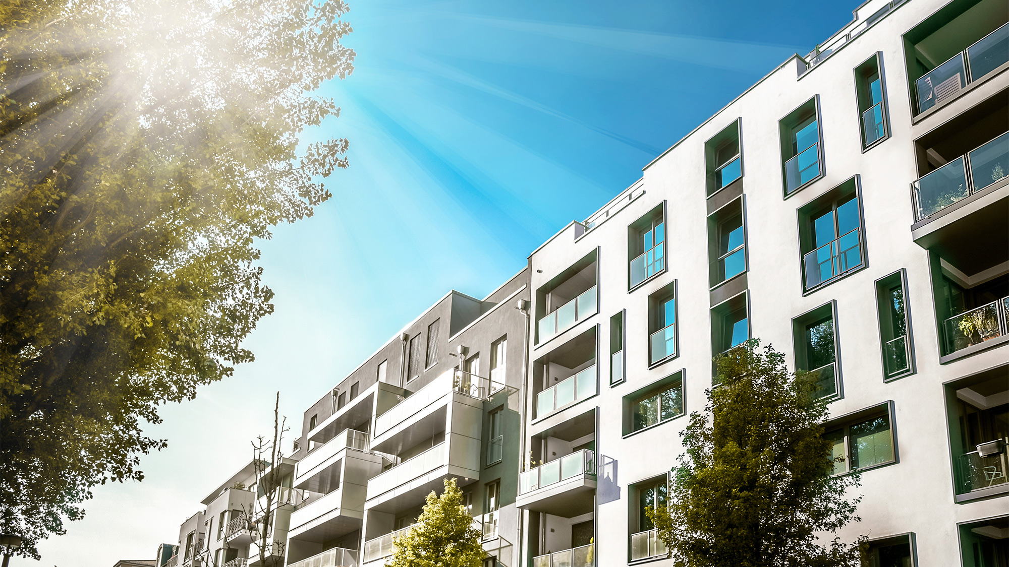 Considerations while hiring a professional condo managing service